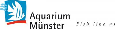 Aquariummuenster