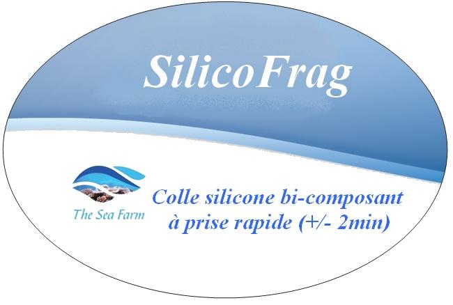 Colle silicone